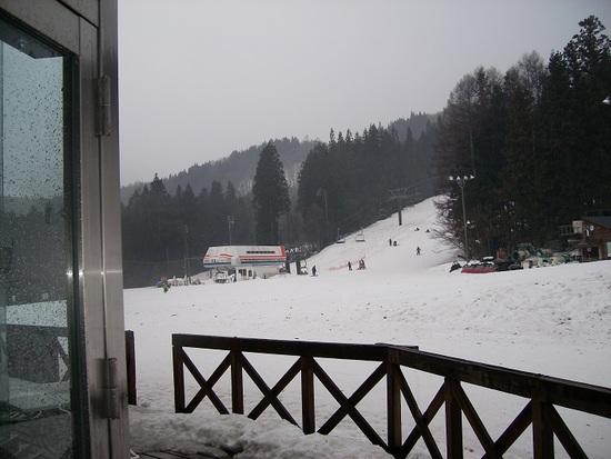 雨でした|白馬さのさかスキー場のクチコミ画像