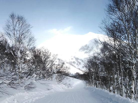 アンヌプリもいいけどモイワもね!|ニセコアンヌプリ国際スキー場のクチコミ画像