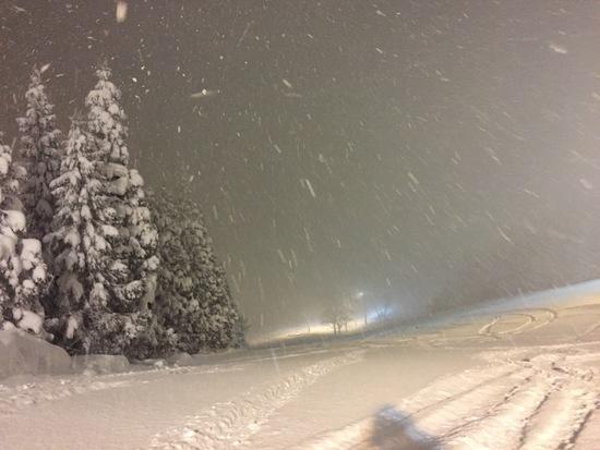 大雪~|ホワイトピアたかすのクチコミ画像