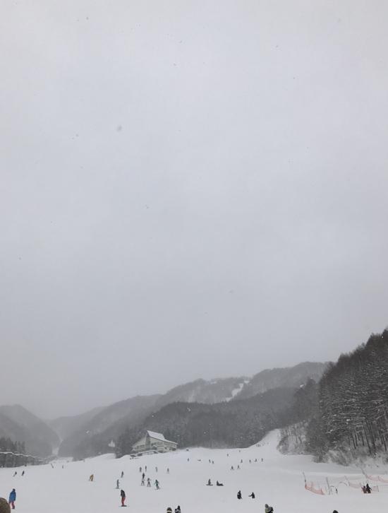 今年も 宝台樹へ 水上宝台樹スキー場のクチコミ画像2