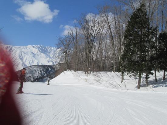 裏コースの魅力|白馬岩岳スノーフィールドのクチコミ画像
