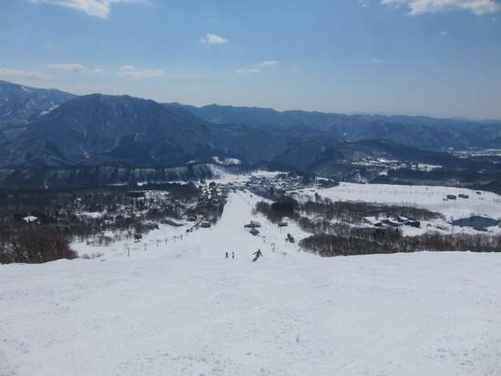2014/03/23(日) 長野県 栂池の速報|栂池高原スキー場のクチコミ画像