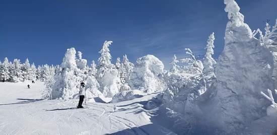 雪質、斜度、コース幅、樹氷最高でした。|蔵王ライザワールドのクチコミ画像2