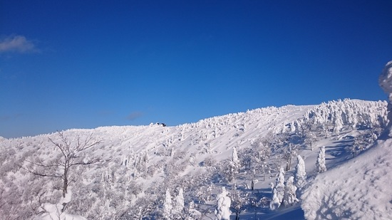 樹氷がキレイ!秋田犬の北斗くん! 阿仁スキー場のクチコミ画像2