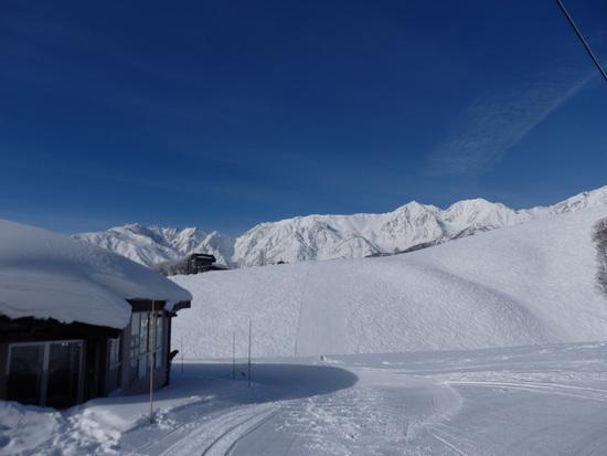 日影コースは非圧雪バーンの練習に最適|白馬岩岳スノーフィールドのクチコミ画像3