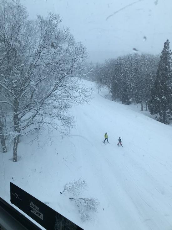 ゲレンデ|かぐらスキー場のクチコミ画像