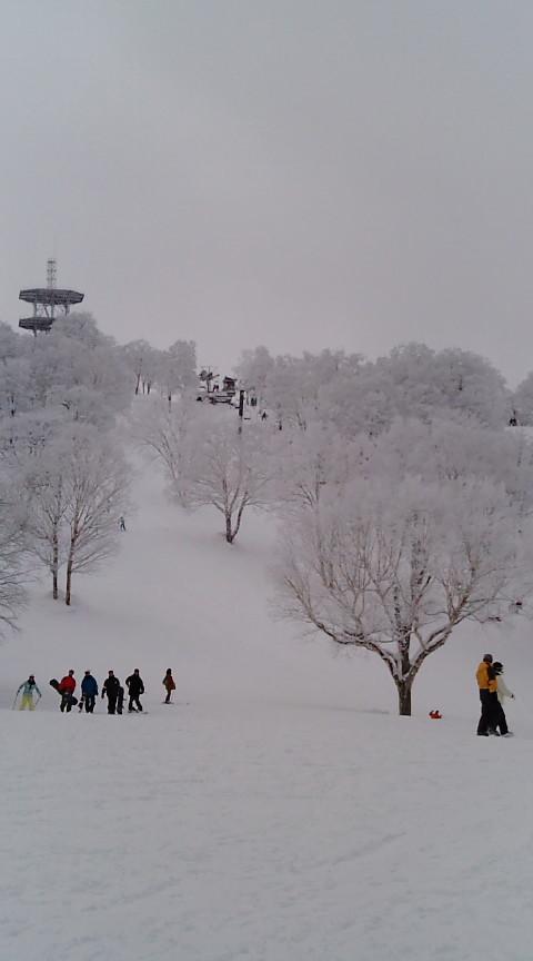 やまびこゲレンデは今、空いてますよ~。 野沢温泉スキー場のクチコミ画像
