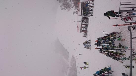 積雪|かぐらスキー場のクチコミ画像