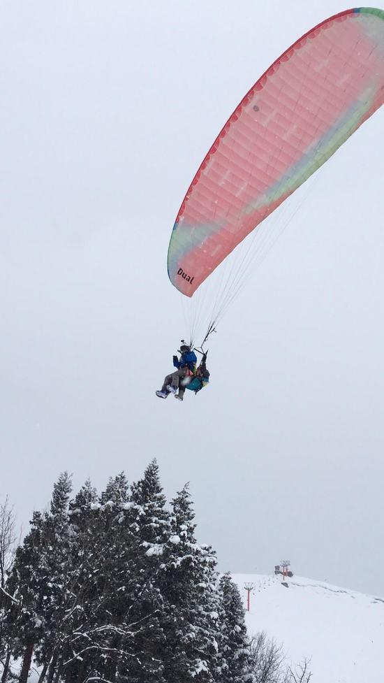 貸し切りゲレンデ|薬師スキー場のクチコミ画像1