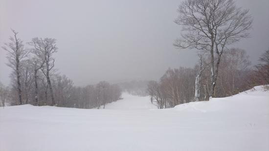 初たんばら来場!|たんばらスキーパークのクチコミ画像