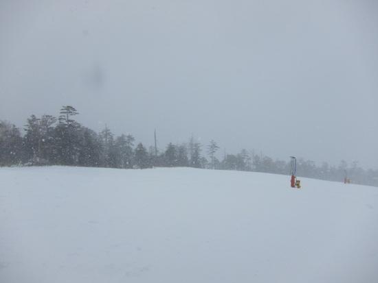 やっぱり雪質が良すぎるぞ、このスキー場!|Ontake2240のクチコミ画像