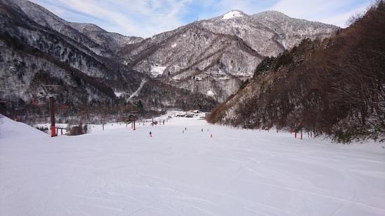 キレイな圧雪がかかってます|平湯温泉スキー場のクチコミ画像2
