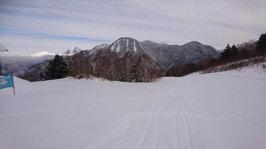 キレイな圧雪がかかってます|平湯温泉スキー場のクチコミ画像3