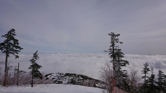 雲海|かぐらスキー場のクチコミ画像