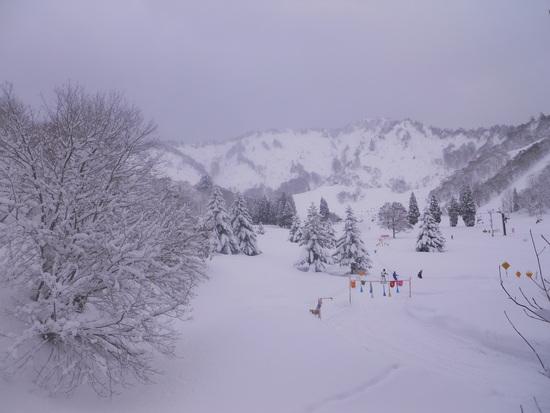 大雪|湯沢中里スノーリゾートのクチコミ画像