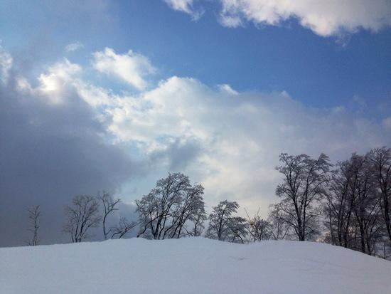 新雪狙ってシャルマン!|シャルマン火打スキー場のクチコミ画像