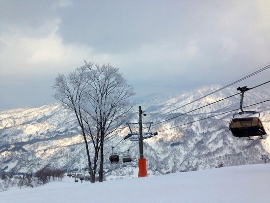 新雪狙ってシャルマン!|シャルマン火打スキー場のクチコミ画像2