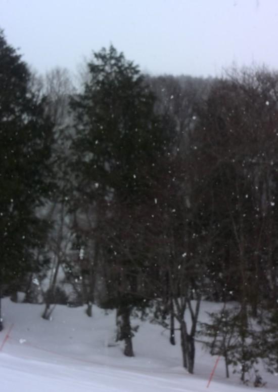 鹿島槍スキー場|HAKUBAVALLEY 鹿島槍スキー場のクチコミ画像