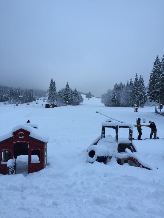 朝はパウダー、初滑り 最高でした^_^|鷲ヶ岳スキー場のクチコミ画像