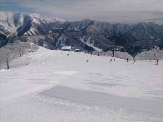 雪がきれい|苗場スキー場のクチコミ画像
