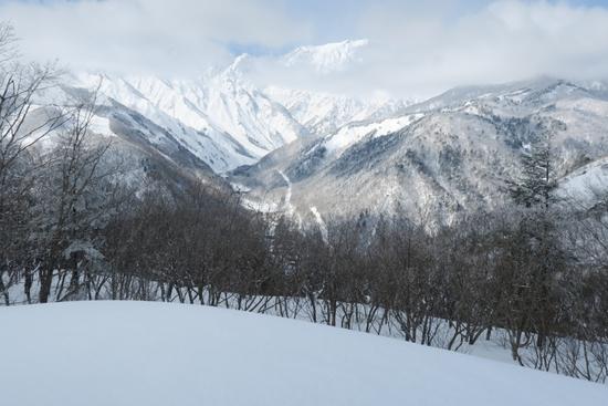 白馬岩岳スノーフィールドのフォトギャラリー3