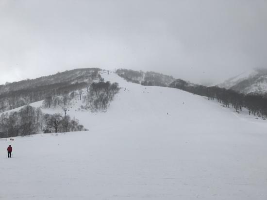 凄い軽い雪|かぐらスキー場のクチコミ画像
