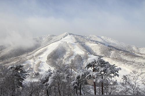 斑尾高原ホテルに泊まりました|斑尾高原スキー場のクチコミ画像