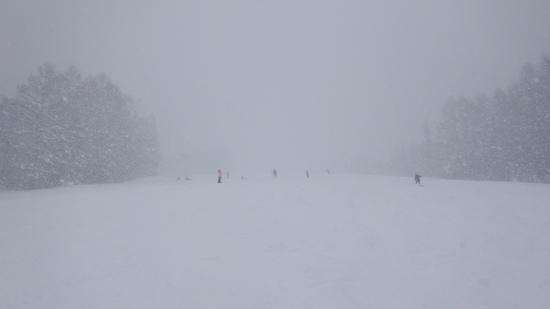 雪が多過ぎ|妙高杉ノ原スキー場のクチコミ画像