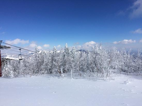 緩斜面の多い初心者向けなスキー場|パルコールつま恋スキーリゾートのクチコミ画像1