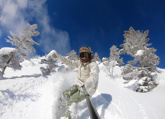 パウダースノー|奥志賀高原スキー場のクチコミ画像