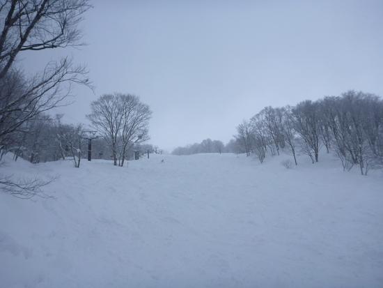 新雪でしたが|六日町八海山スキー場のクチコミ画像