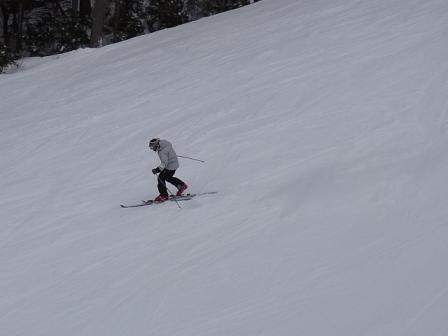 今日も良い雪です。|信州松本 野麦峠スキー場のクチコミ画像