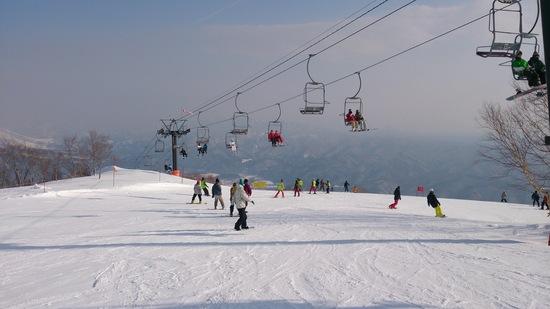 2月なのに春スキー?!