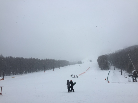 Men'sDAY|しらかば2in1スキー場のクチコミ画像2
