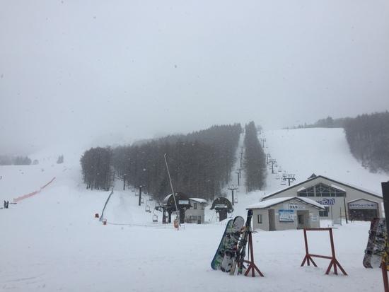Men'sDAY|しらかば2in1スキー場のクチコミ画像3