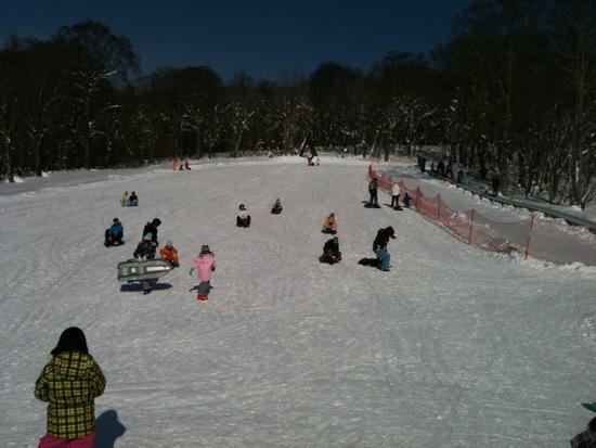 子供は雪が大好き!|たんばらスキーパークのクチコミ画像