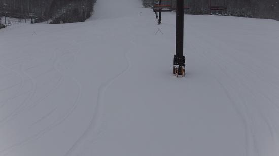 131212新雪でオープン エコーバレースキー場のクチコミ画像