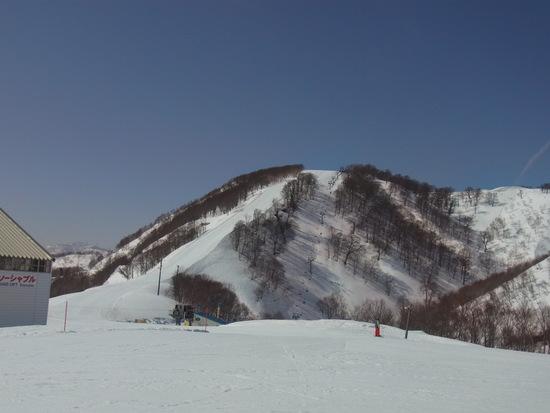 初のガーラ湯沢|GALA湯沢スキー場のクチコミ画像2