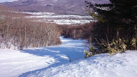 雪が少なく残念|鹿沢スノーエリアのクチコミ画像