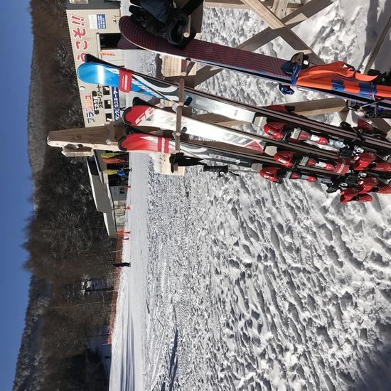 今シーズン初スキー|ブランシュたかやまスキーリゾートのクチコミ画像