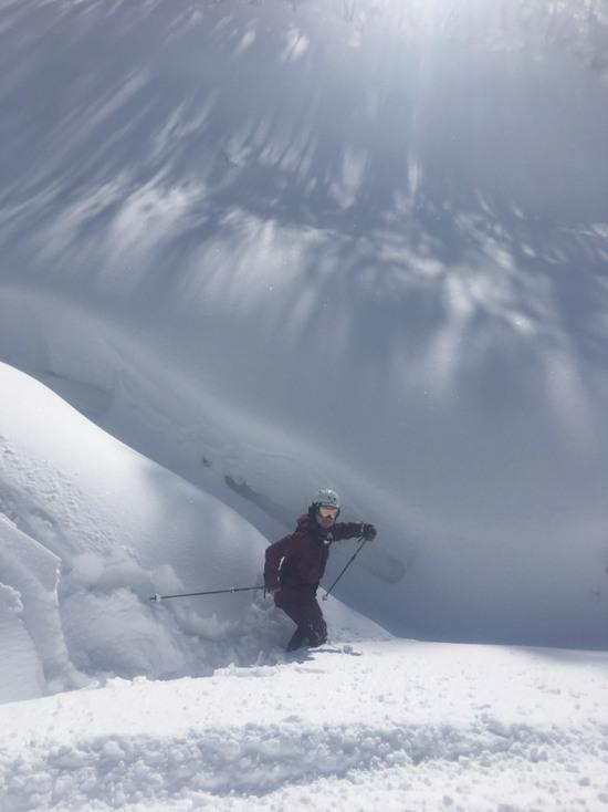 パウダー人気のスキー場|白馬岩岳スノーフィールドのクチコミ画像