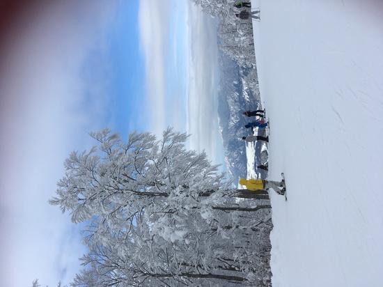 サイコー|スキージャム勝山のクチコミ画像