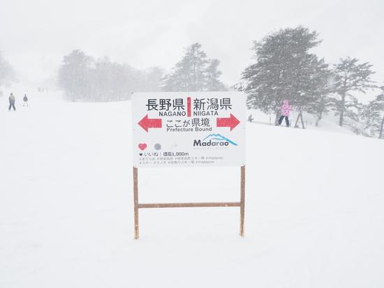 ほどほど広大なゲレンデであきることなく滑れる|斑尾高原スキー場のクチコミ画像3