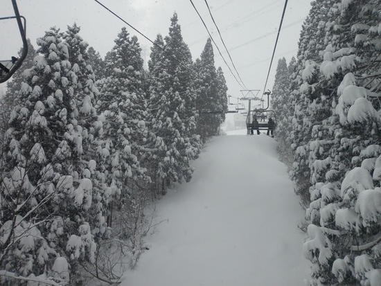 ゆきだるまさん!ドカ雪です^^|かぐらスキー場のクチコミ画像