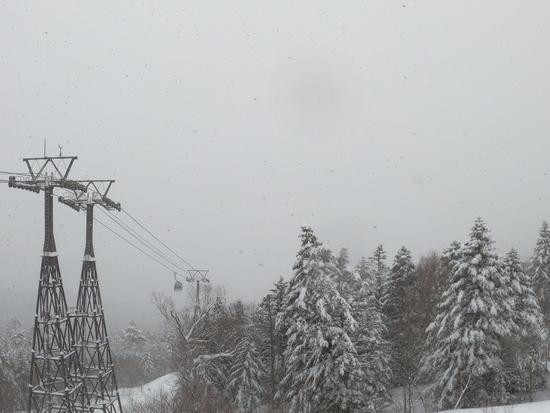 まさかのパウダー!! パルコールつま恋スキーリゾートのクチコミ画像2