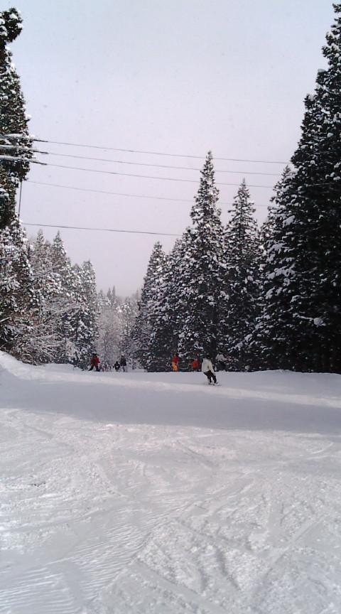ロングコースが魅力です!|妙高杉ノ原スキー場のクチコミ画像