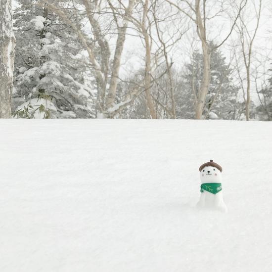 寺子屋にいたか!おこみーん。|志賀高原リゾート中央エリア(サンバレー〜一の瀬)のクチコミ画像