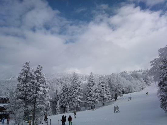 箕輪最高!|箕輪スキー場のクチコミ画像