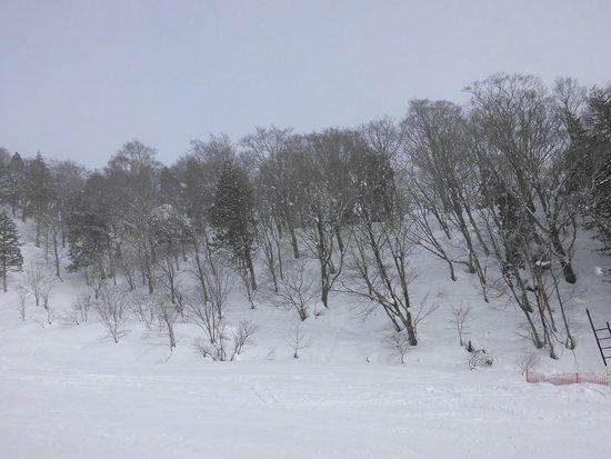 おおむね好天に恵まれた|めいほうスキー場のクチコミ画像