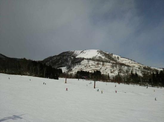 白馬でも雪不足のスキー場が多い中、ほぼ全面オープン!|白馬乗鞍温泉スキー場のクチコミ画像1